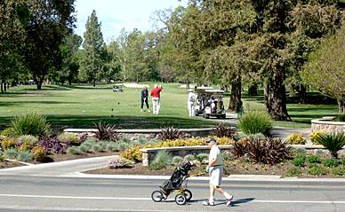 Local Attractions Bay Area CA