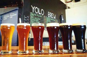 Yolo Brew