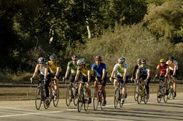 Cycling in Yolo