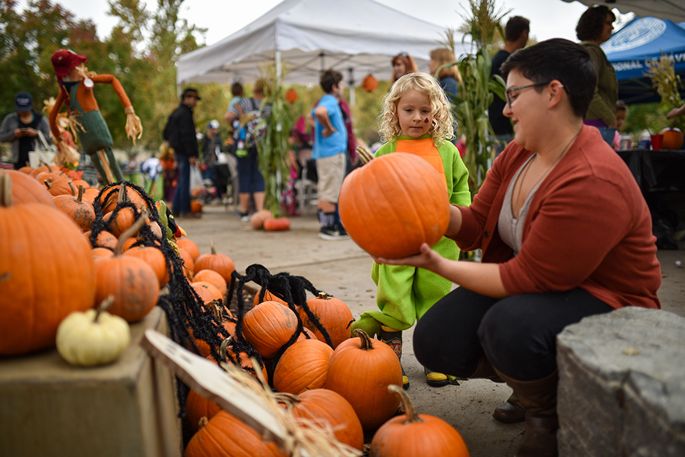 Davis Farmers Market: Pumpkin Patch