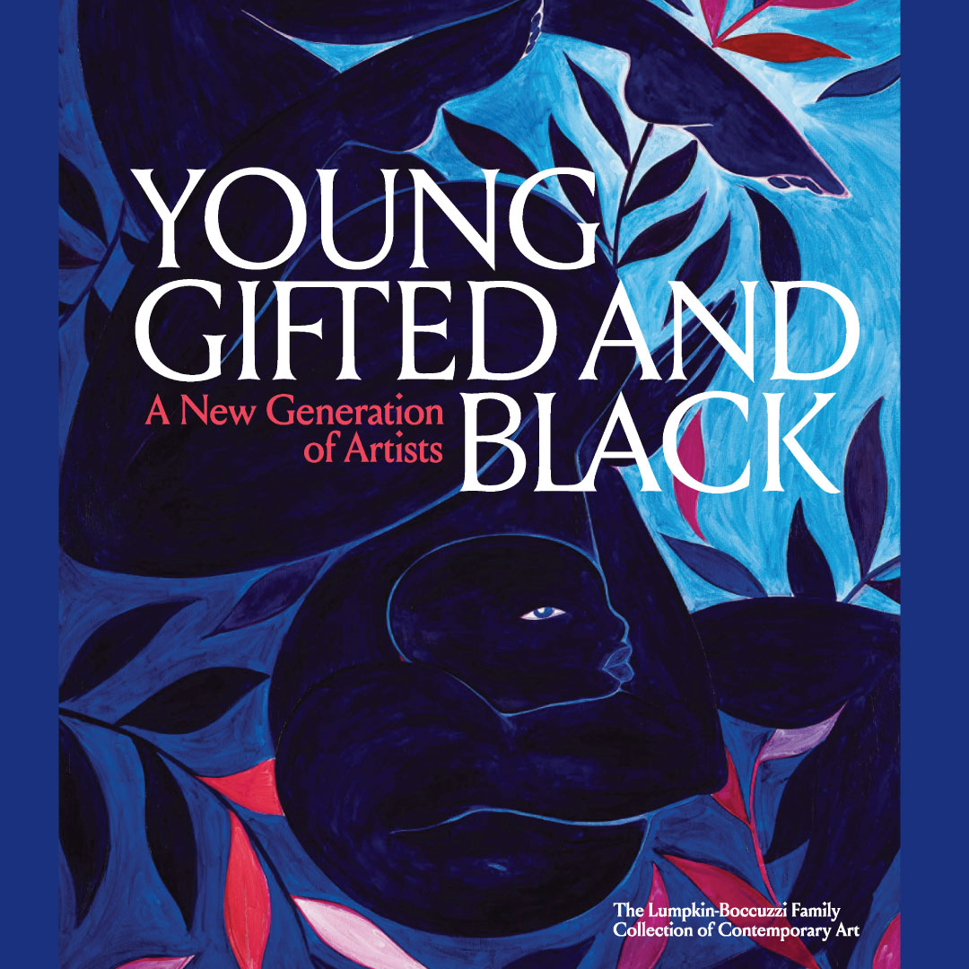 "Conversation and Book Launch for ""Young, Gifted and Black: A New Generation of Artists, The Lumpkin-Boccuzzi Family Collection of Contemporary Art"""